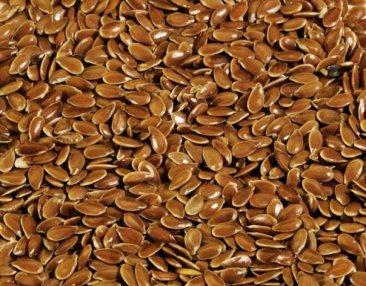Фото Лен темный органический семена (0.5кг)