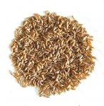 Фото Пшеница хорасан (камут) 250 гр